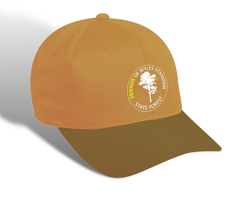 friends logo hat