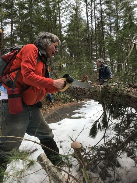 Bob Vogel sawing downed tree along trail