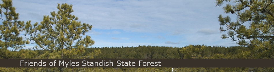 Friends Myles Standish State Forest Banner